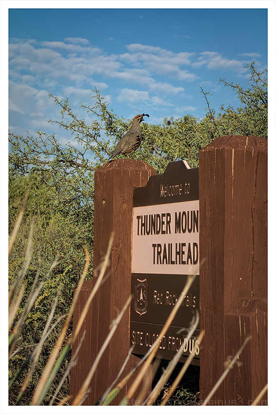 Trailhead Greeter