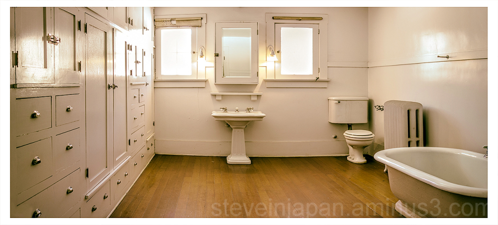 The bathroom in the Douglas Mansion.