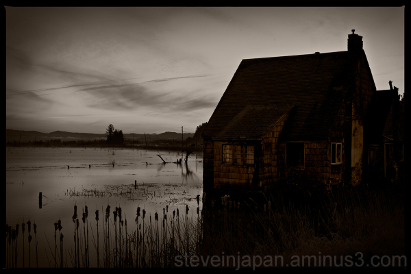 An old house near Astoria, OR in a shadowy world.