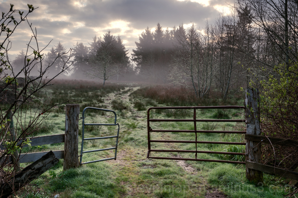 A gate and field near the Chinook River.