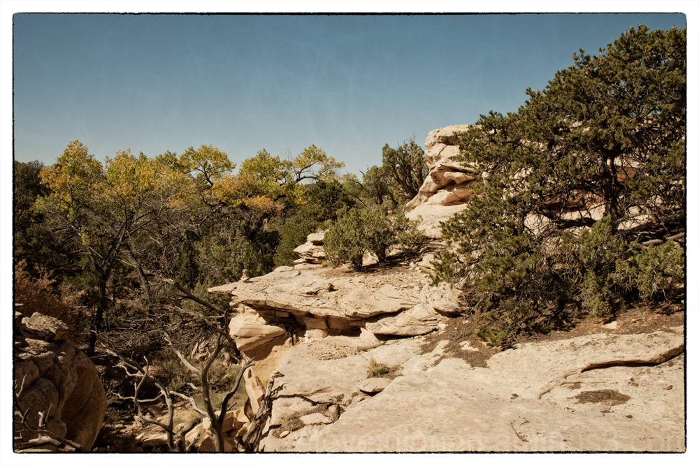 The trail from Cutthroat Castle at Hovenweep NM.
