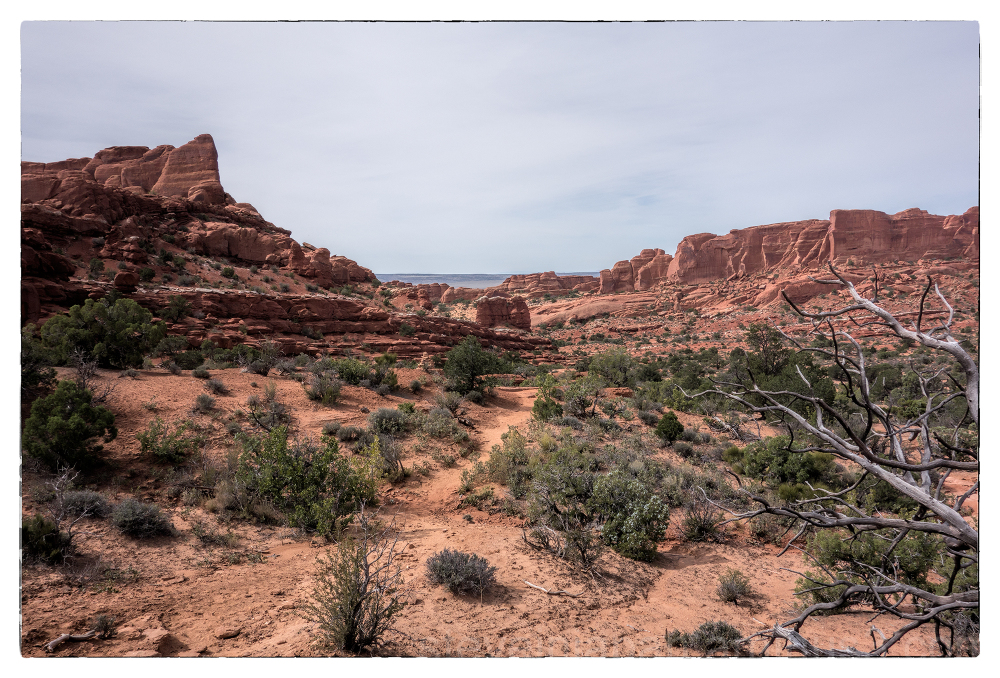 The trail to Tower Arch in Arches NP.