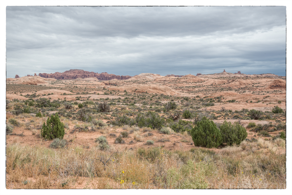 Ancient sand dunes in Arches National Park.
