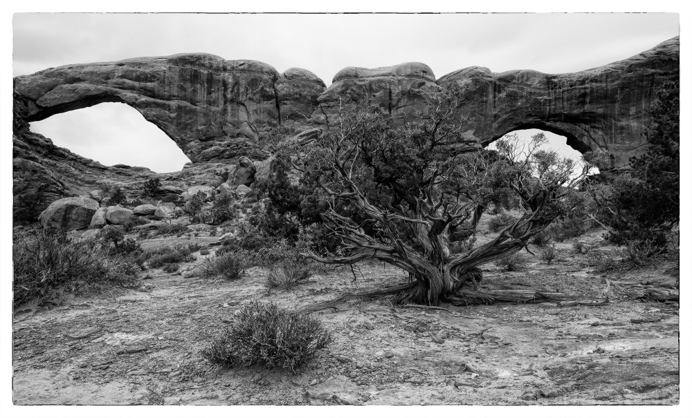 The Windows in Arches National Park.