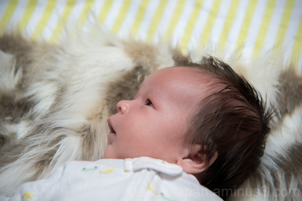 A portrait of newborn Anders.