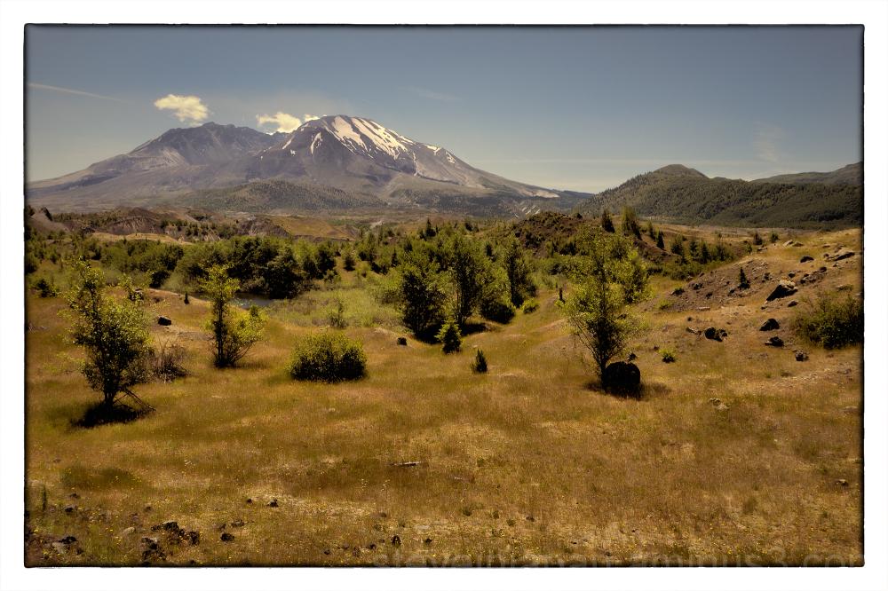 The Hummocks Trail near Mount St. Helens.