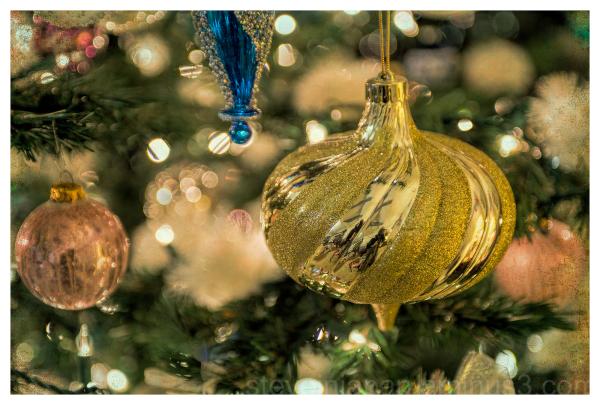 Some Christmas tree lights.