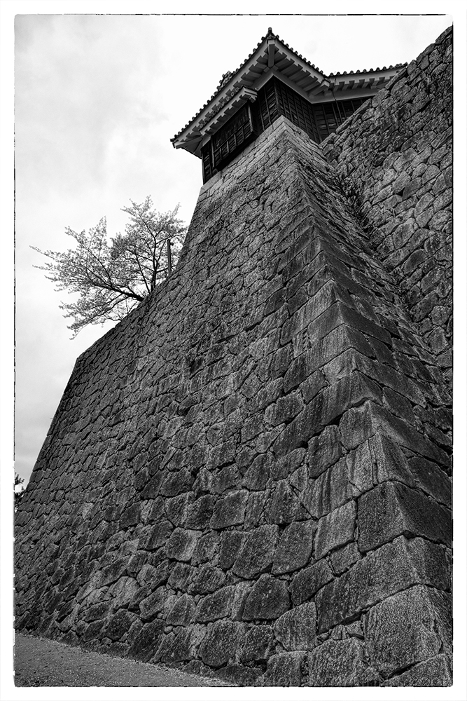 The stone walls of Matsuyama Castle.