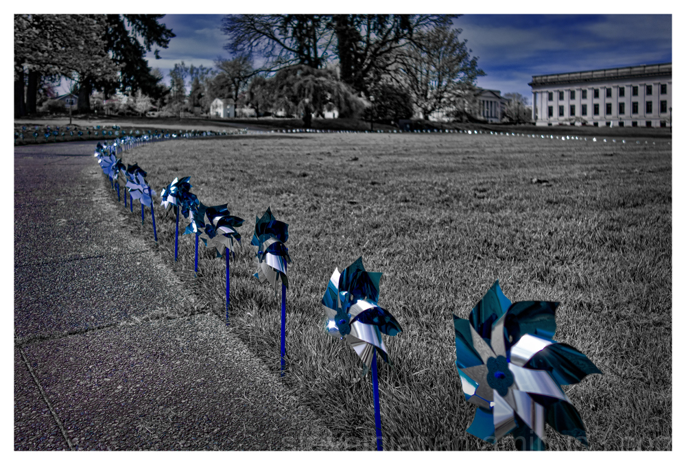 Pinwheels on the Capitol grounds in Olympia, WA.