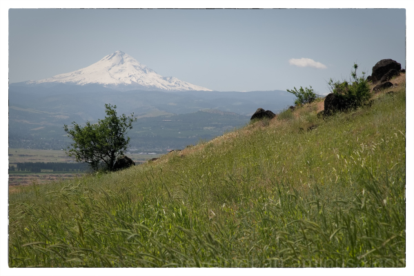 A hike at Columbia Hills State Park in Washington.