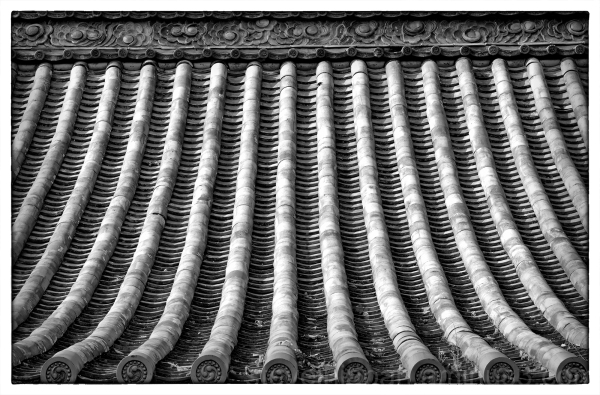 The tile roof at Ishite-ji in Matsuyama, Japan.