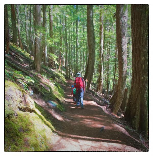 The Rampart Ridge Loop in Mount Rainier NP.