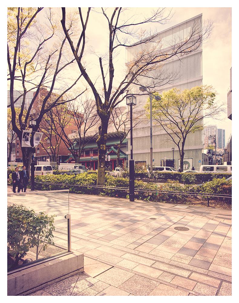 Omote-sando & Aoyama-dori Tokyo, Japan