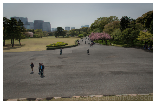 A walk in the Imperial Palace East Garden, Tokyo.