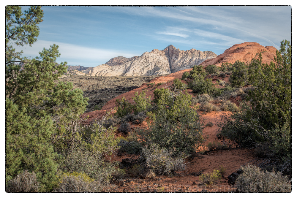 Butterfly Trail in Snow Canyon State Park, Utah.