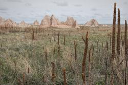 Badlands National Park in South Dakota, USA.