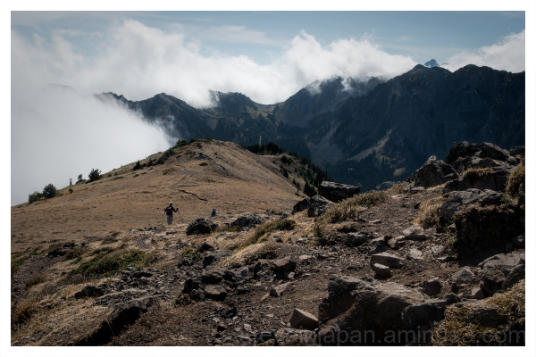 The trail up Mount Townsend in Washington State.
