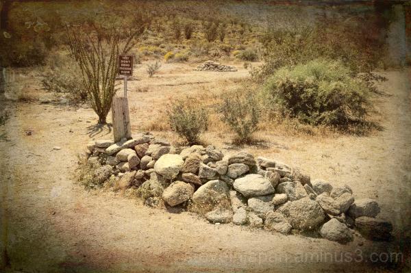 Anza-Borrego State Park in Borrego Springs, CA.