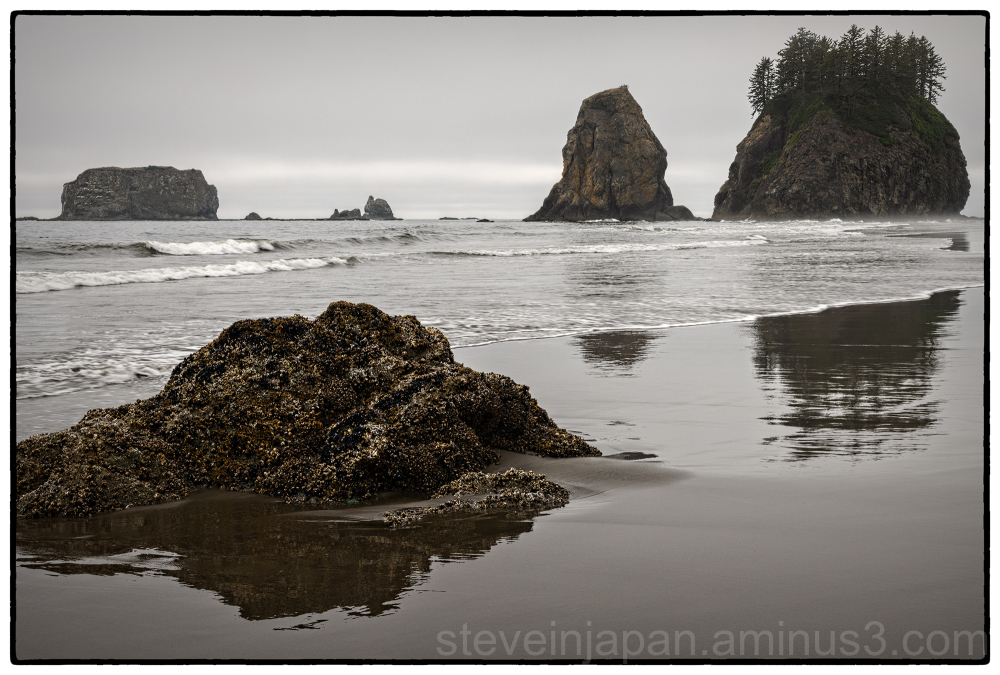 Second Beach on the coast in Washington state.