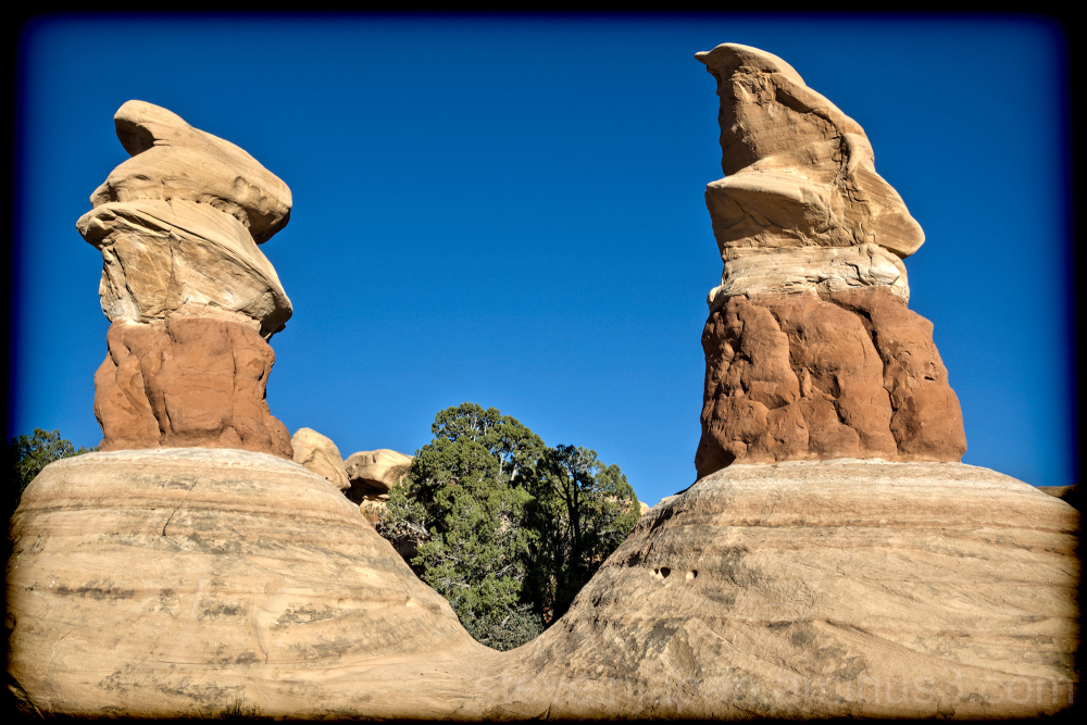 Devil's Garden in Grand Staircase-Escalante NM.