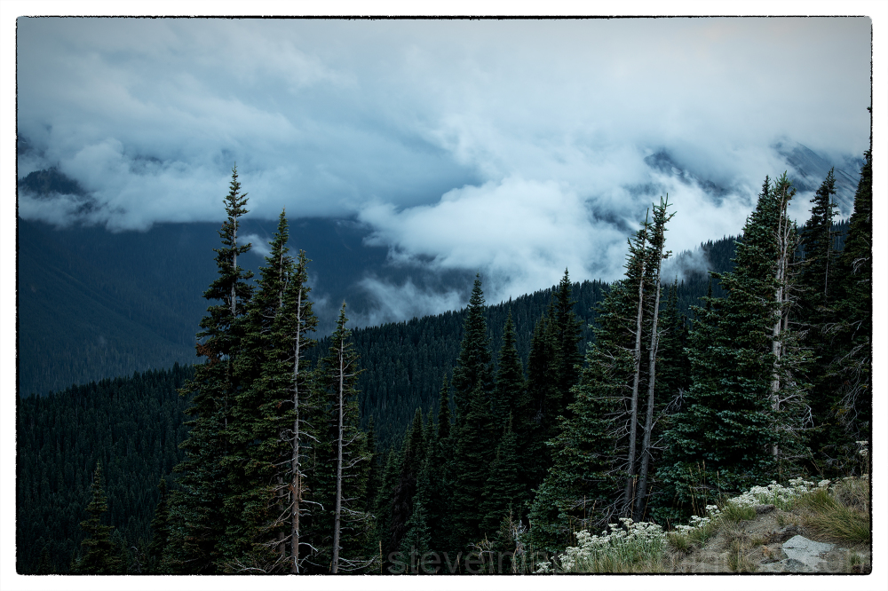 Clouds on the Sunrise Road at Mt. Rainier.