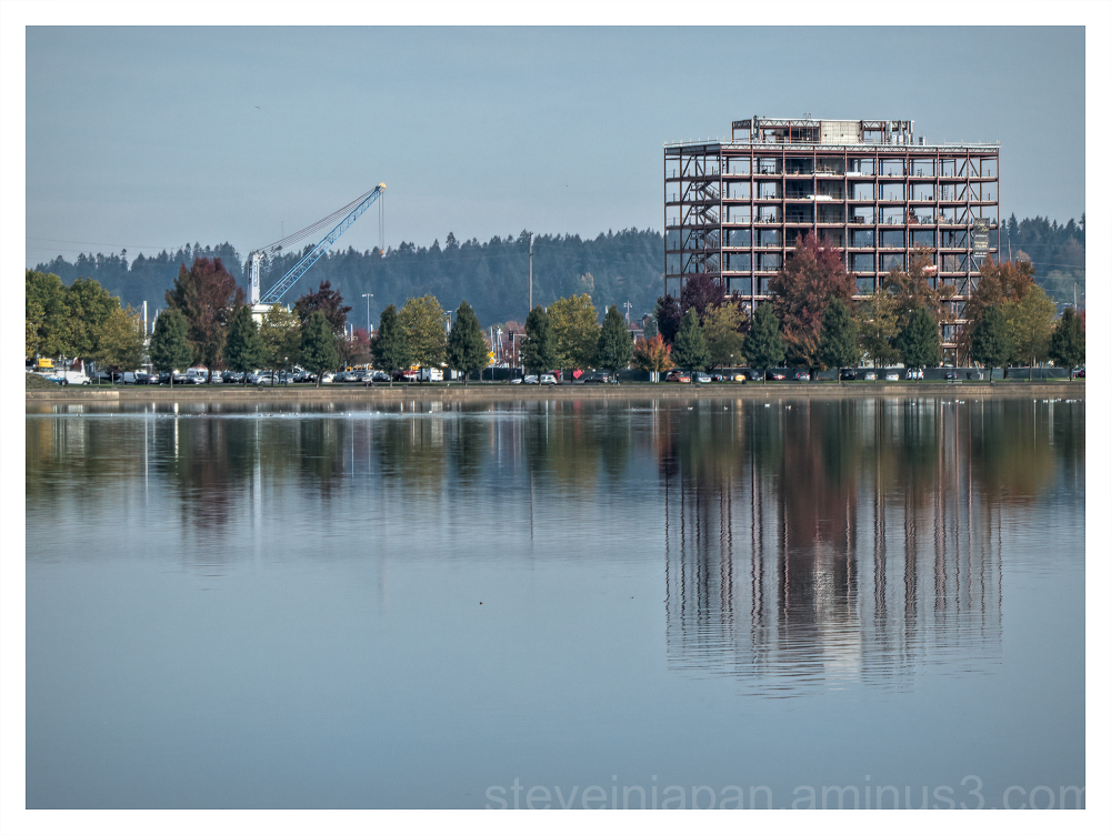 Mistake by the Lake in Olympia, Washington.