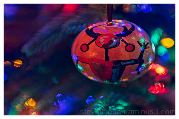 Seasonal decorations seen on our Christmas tree.