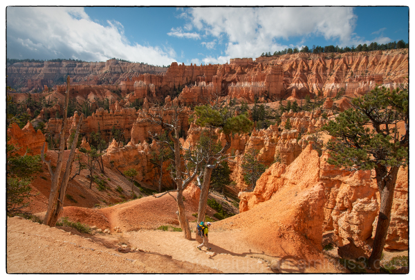 Queens Garden trail at Bryce Canyon National Park.