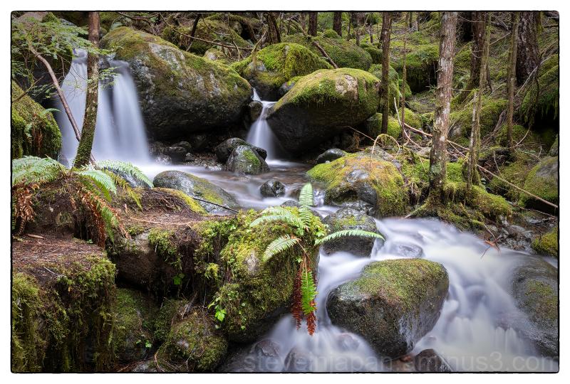 Tiny Falls on Skinwood Creek