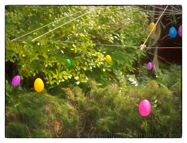 The Easter Bunny Has Been About