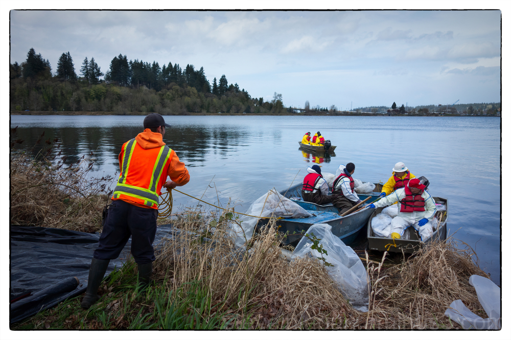Spill response at Capitol Lake in Olympia, WA.
