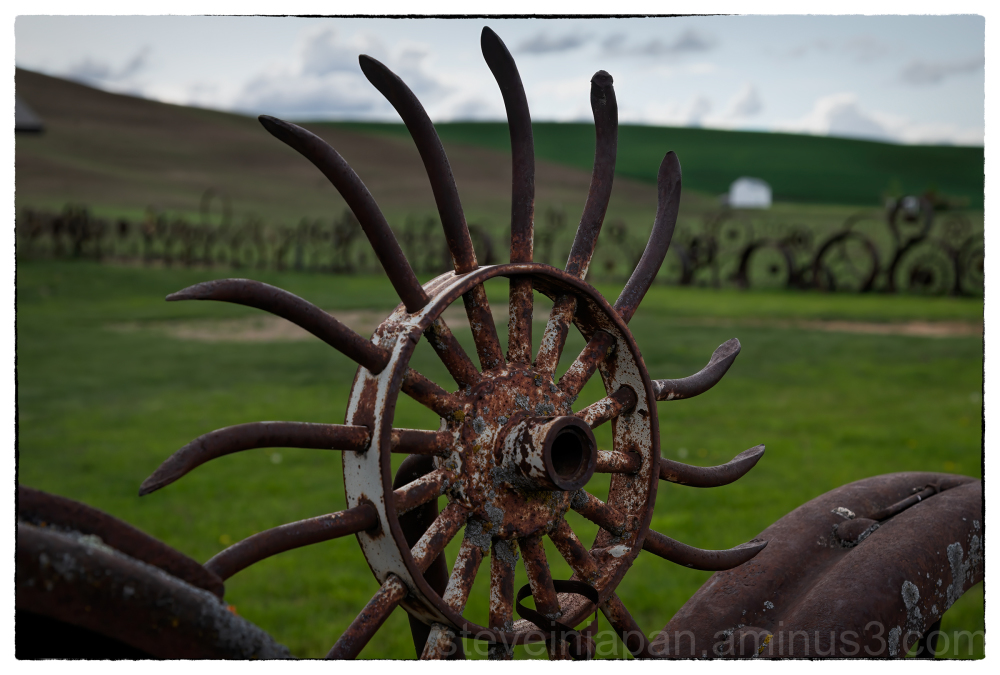A fence, at Dahmen Farm, in the Palouse.
