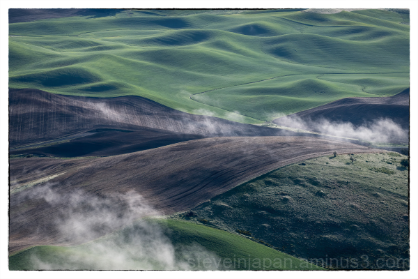 Fog on the Palouse