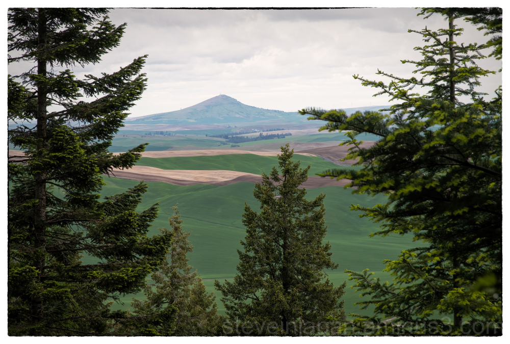 Steptoe Butte from Kamiak Butte in the Palouse.
