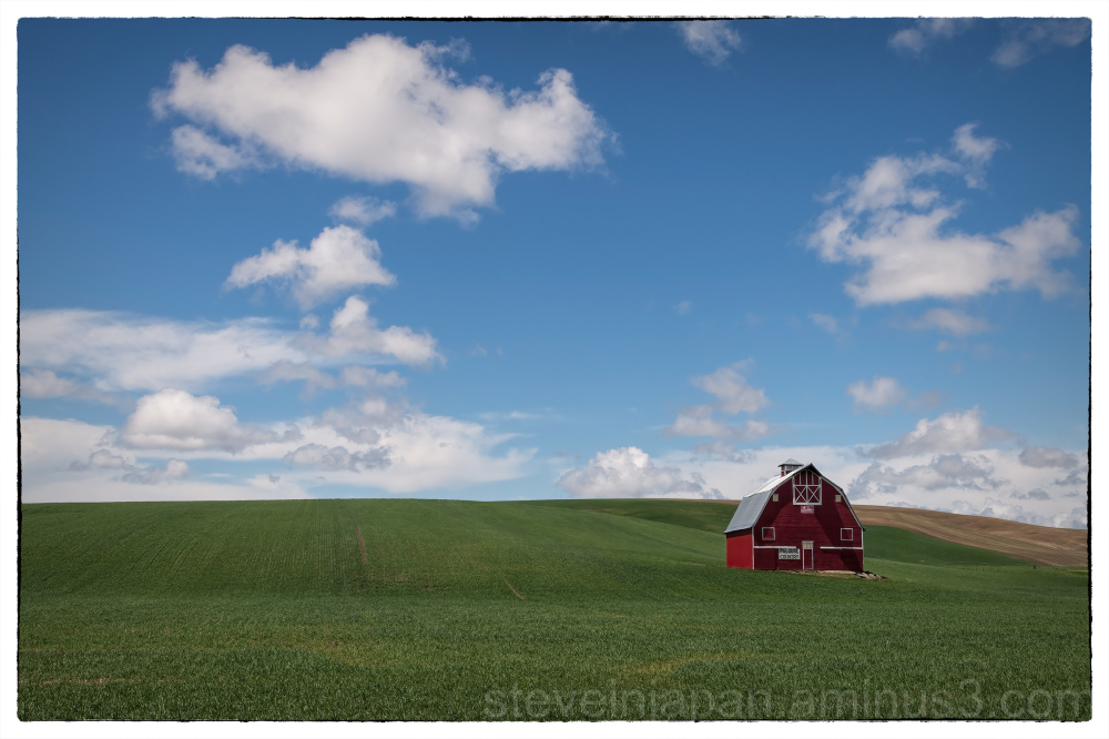 A barn and wheat field in the Palouse.