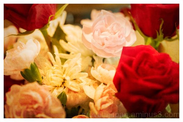Flowers in the kitchen window.