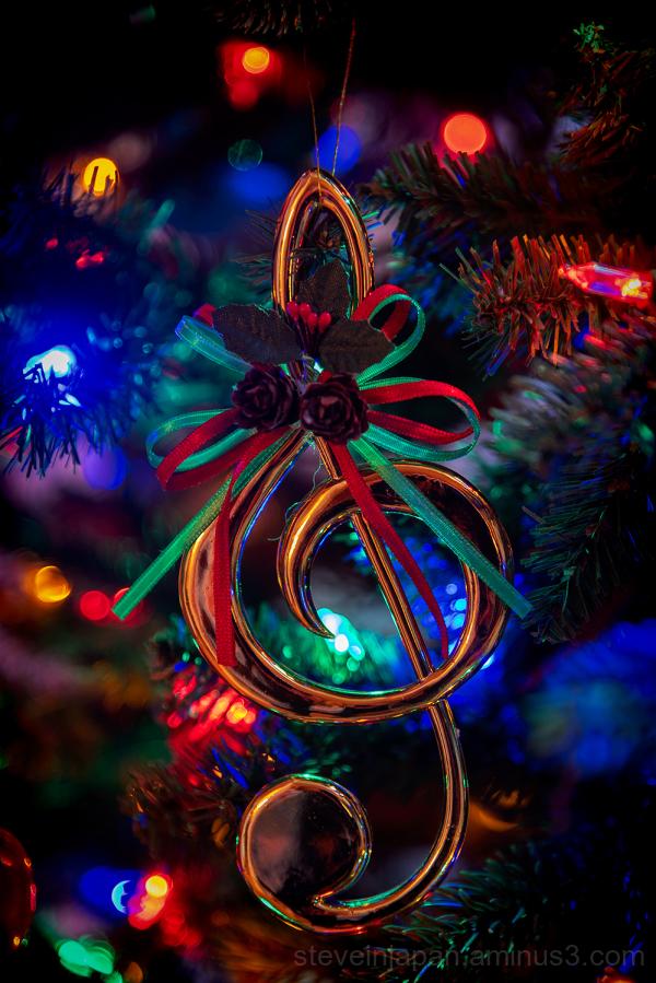 Seasonal decorations seen on our Christmas tree.