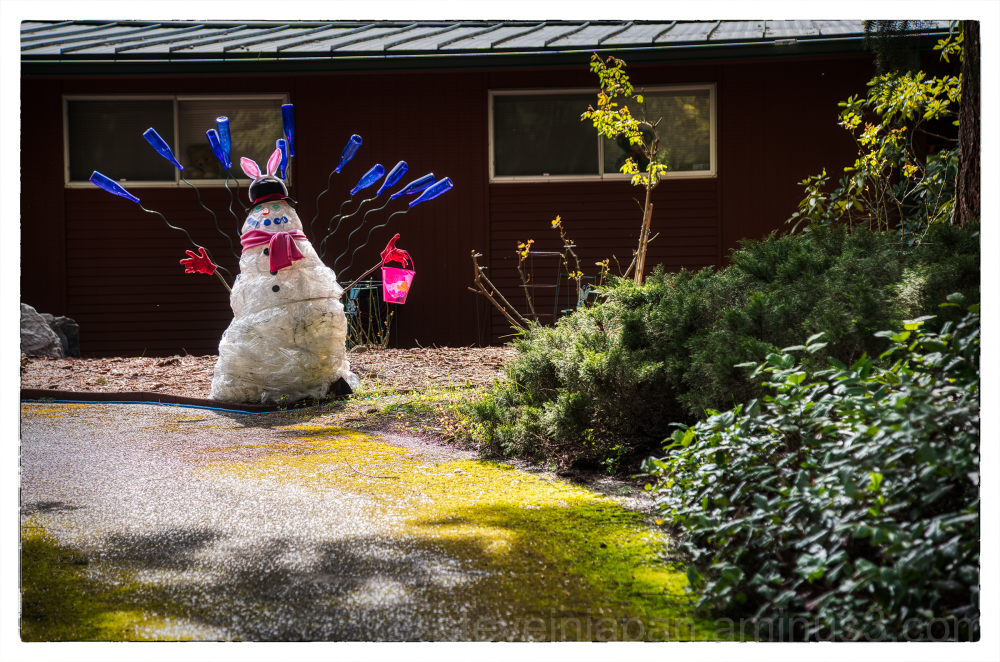 The Easter Bunny is social distancing.