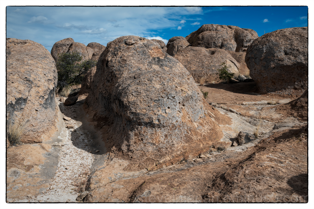 City of Rocks State Park in New Mexico, USA.