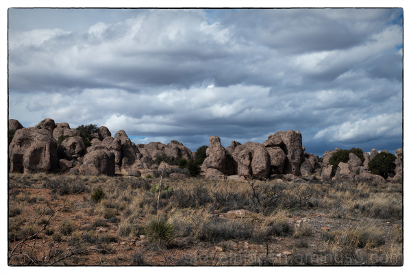 City of Rocks State Park New Mexico, USA