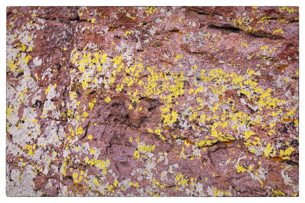 Chiricahua National Monument in Arizona, USA.