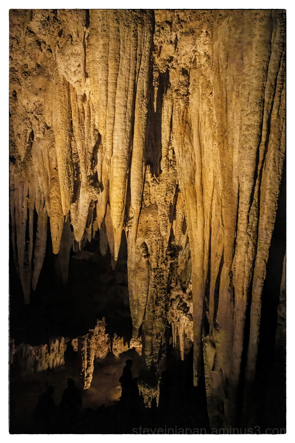 Carlsbad Caverns National Park in New Mexico, USA.