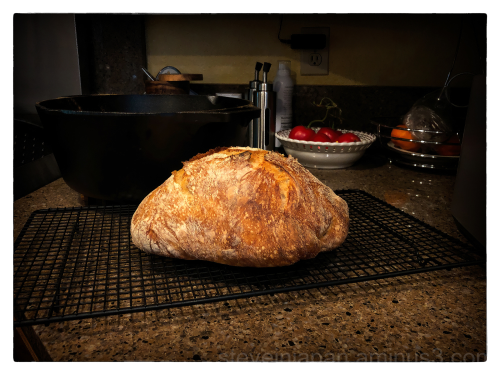 Bread baked in a cast iron Dutch oven.