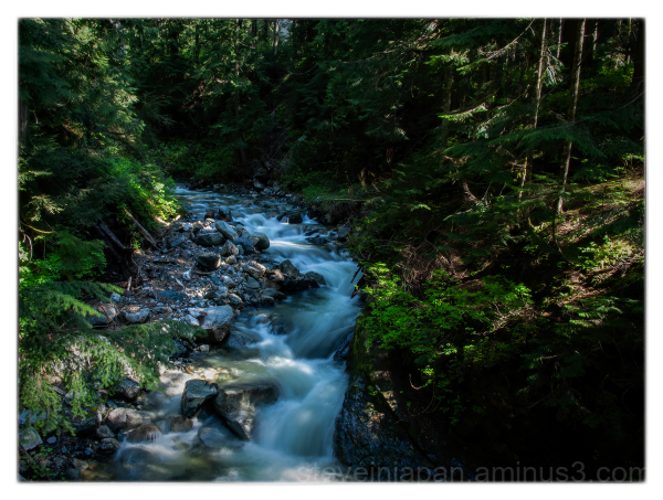 Denny Creek in the Cascade Range of Washington.