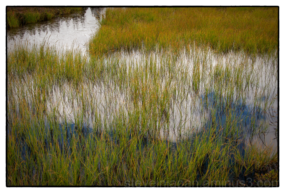 Picture Lake in the North Cascades of WA.