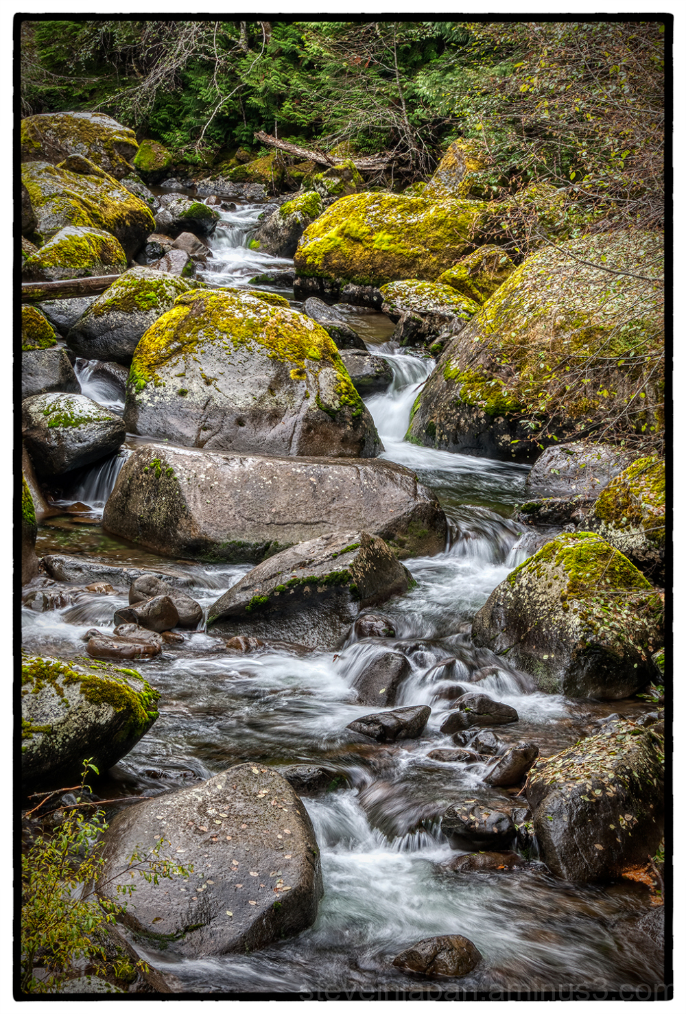 A creek at Conboy Lake National Wildlife Refuge.