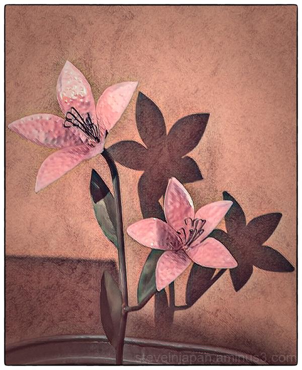 An artsy flower in Santa Fe.