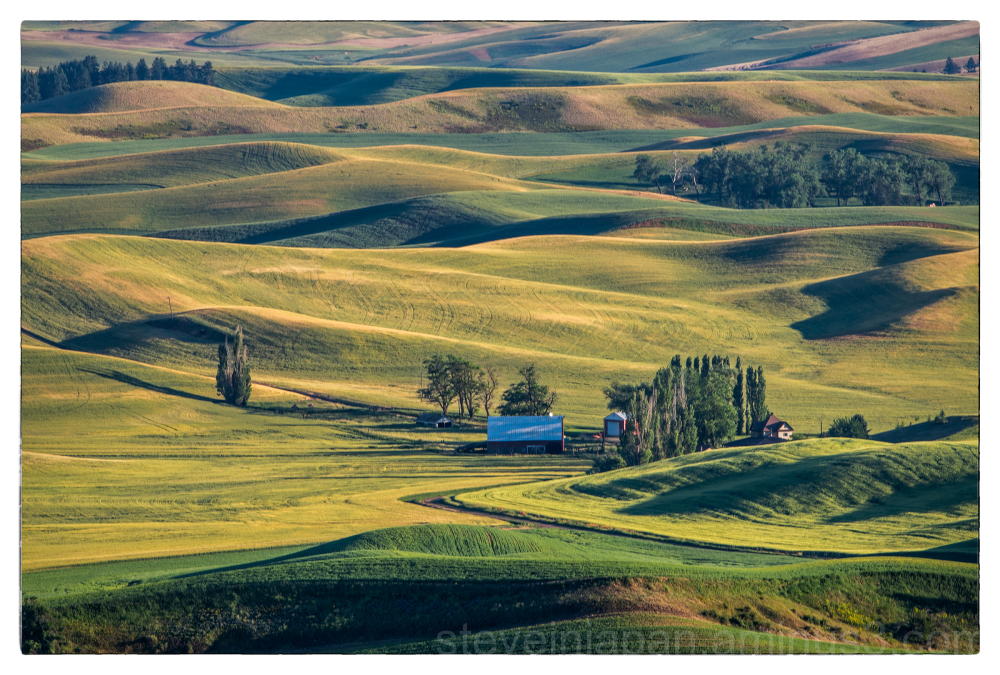 A view of the Palouse from Steptoe Butte.