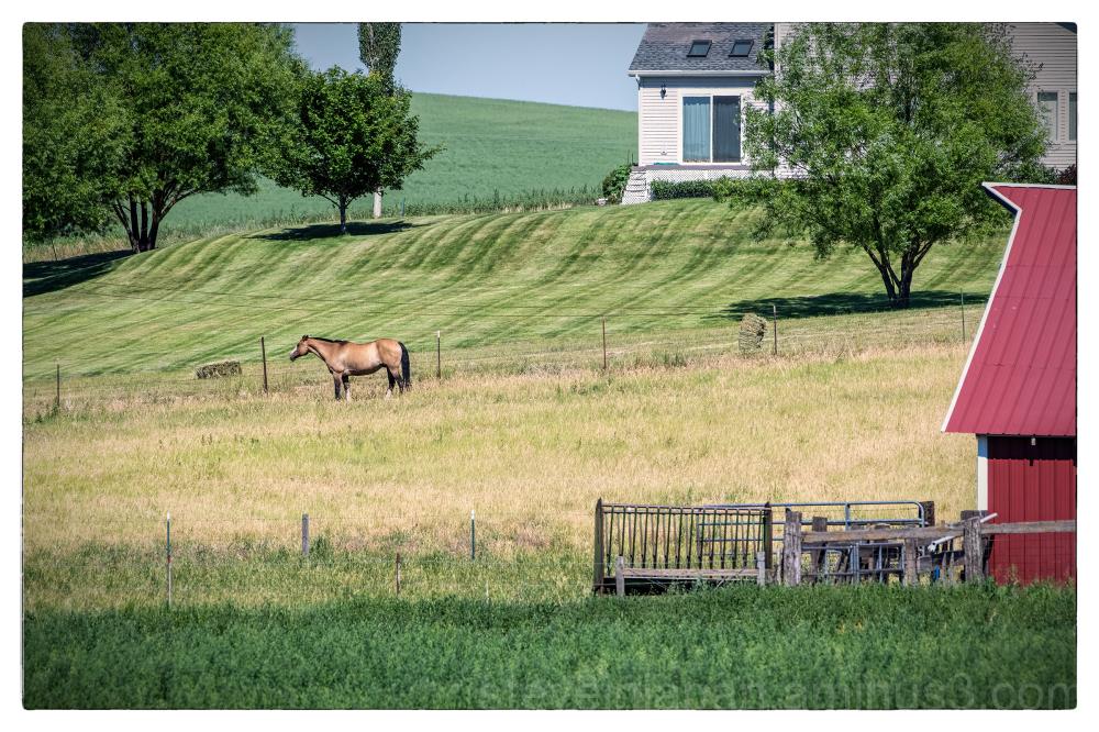 A nice farmstead near Steptoe Butte.