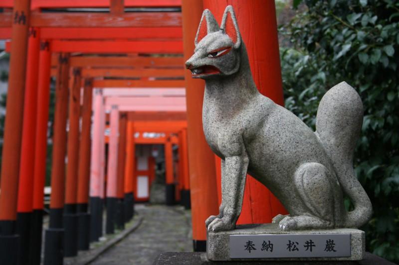 Fox religion japan kyoto shrine